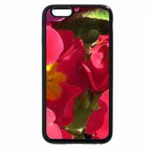 iPhone 6S Plus Case, iPhone 6 Plus Case, Bright Pink Primulas