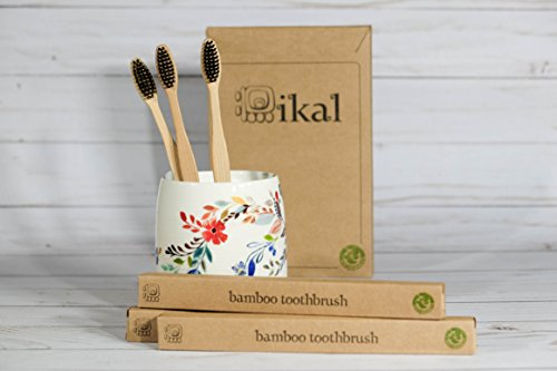 Natural Bamboo Toothbrush [6-Pack] - PBA Free - Manual Toothbrushes by IKAL