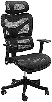 Amazon Com Ergonomic Mesh Office Chair Sieges Adjustable Headrest 3d Flip Up Arms Back Lumbar Support High Back Computer Desk Task Executive Chair