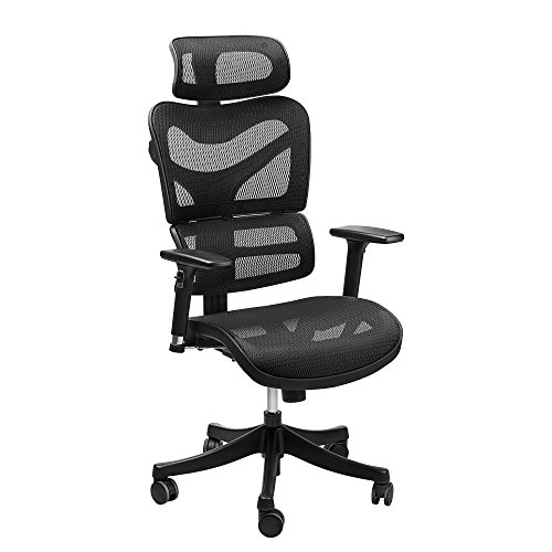 Ergonomic Mesh Office Chair - SIEGES Adjustable Headrest, 3D Flip-up Arms, Back Lumbar Support, High Back Computer Desk Task Executive Chair, Black