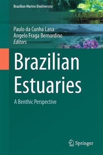 Brazilian Estuaries: A Benthic Perspective (Brazilian Marine Biodiversity)