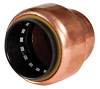 Elkhart Products 10169966 CopperBite Lead-Free 1/2-Inch Push-Fit Tube Cap
