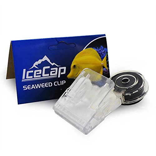 (IceCap Magnetic Seaweed Clip)