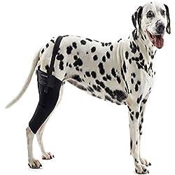 Kruuse Rehab Left Knee Protector, Large