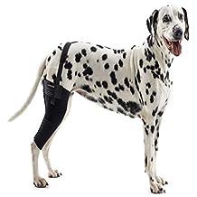 Kruuse KR279855 Rehab Knee Protector for Dogs, L Left