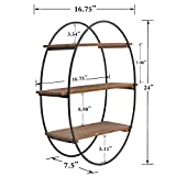 Hanging Oval Floating Shelf Wall Mounted with 3