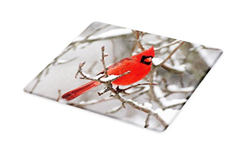 (Lunarable Cardinal Cutting Board, Northern American Mountain Bird on a Branch Covered in Snow Animal Photography, Decorative Tempered Glass Cutting and Serving Board, Large Size, White Grey)