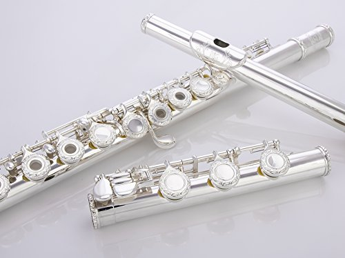 Glory HAND-ENGRAVED SILVER PLATED HIGH GRADE FLUTE 17 Hole OPEN/CLOSED C Flute With Case, Tuning Rod and Cloth,Joint Grease and Gloves,HIGH GRADE HAND ENGRAVED