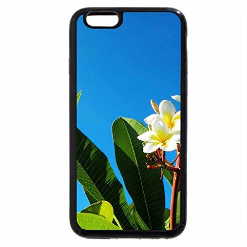 iPhone 6S / iPhone 6 Case (Black) Plumeria and Blue Sky