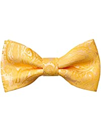 Alizeal Boys Adjustable Fashion Paisley Floral Strapped Pre-tied Kids Bow Tie, Yellow