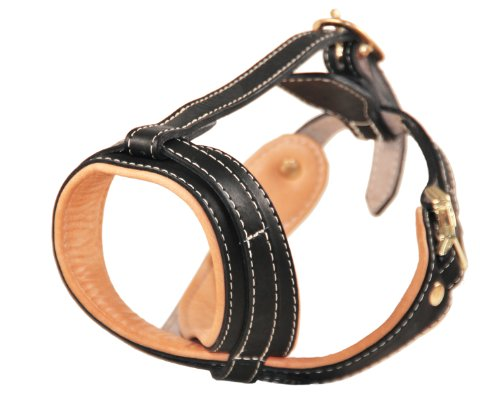 Dean & Tyler D&T Royal Muzzle ROT Royal Leather Padded Muzzle, Rottweiler, Black by Dean & Tyler