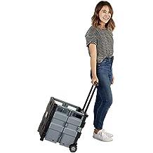 ECR4Kids MemoryStor Universal Rolling Cart and Organizer Bag Set