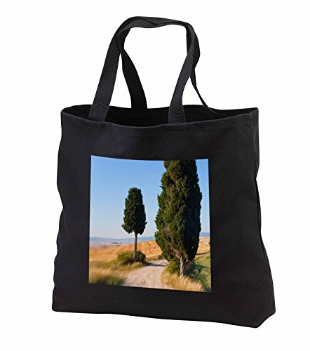 danita-delimont-italy-winding-road-val-d-orica-tuscany-italy-tote-bags-black-tote-bag-14w-x-14h-x-3d