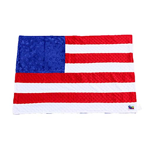 Minky Dot Plush USA Flag 24