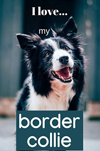 I Love my Border Collie: Lined Notebook / Journal.  Ideal gift for the border collie lover.