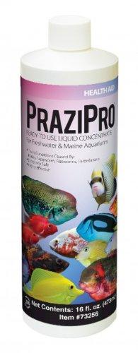 Hikari Prazipro 16oz by Hikari Sales USA (Image #1)