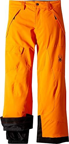 (Spyder Boys' Action Ski Pant, Exuberance/Black, Size 12)