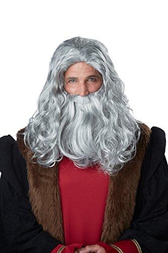 California Costumes Men's Renaissance Man Wig and Beard, Gray, One (Renaissance Man Wig)