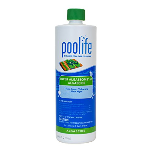 poolife Super Algae Bomb 60 (1 qt) (12 Pack) by POOLIFE