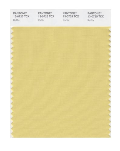 PANTONE Smart 13-0725X Color Swatch Card, Raffia