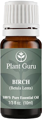 Birch Essential Undiluted Therapeutic Grade product image