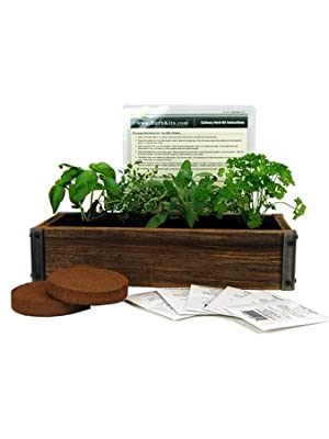 Reclaimed Barnwood Planter Box Mini Herb Garden Kit - Grow Cooking Herbs from Seed: Basil, Dill, Thyme, Parsley, Oregano, Cilantro