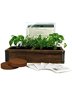 Reclaimed Barnwood Planter Box Mini Herb Garden Kit   Grow Cooking Herbs  From Seed: Basil