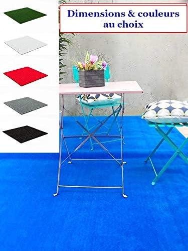 MadeInNature Tapis spécial Salon de Jardin/Tapis extérieur et  intérieur/Tapis pour Terrasses et Balcons/Dimensions et Coloris au Choix  (Bleu, 3x2m)