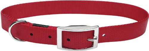(Dogit Nylon Single Ply Dog Collar with Buckle, X-Large, 24-Inch, Red)