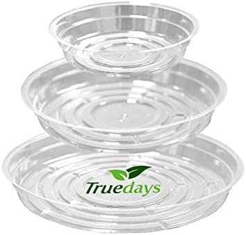 TRUEDAYS 10inch Saucers Excellent Outdoor product image
