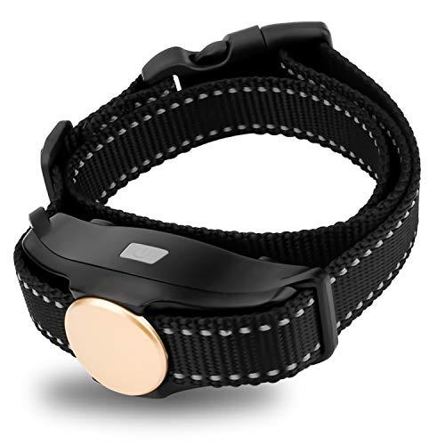 Qinshi Dog Training Collar Receiver