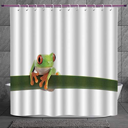 SCOCICI Cool Shower Curtain 2.0 [ Animal Decor,Red Eyed Tree Frog Perches on a Long Slim Leaf Tropic Rainforest Animal Wild Life Photo,Green White ] Digital Print Polyester Fabric Bathroom Set - Bb Set Rainforest Animals