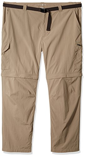 Silver Pant Columbia Sage Ridge Men's Convertible UqW5Fgw