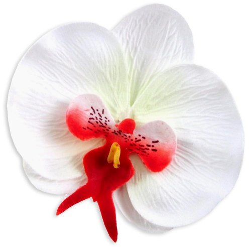 10-White-Red-Phalaenopsis-Orchid-Silk-Flower-Heads-375-Artificial-Flowers-Heads-Fabric-Floral-Supplies-Wholesale-Lot-for-Wedding-Flowers-Accessories-Make-Bridal-Hair-Clips-Headbands-Dress
