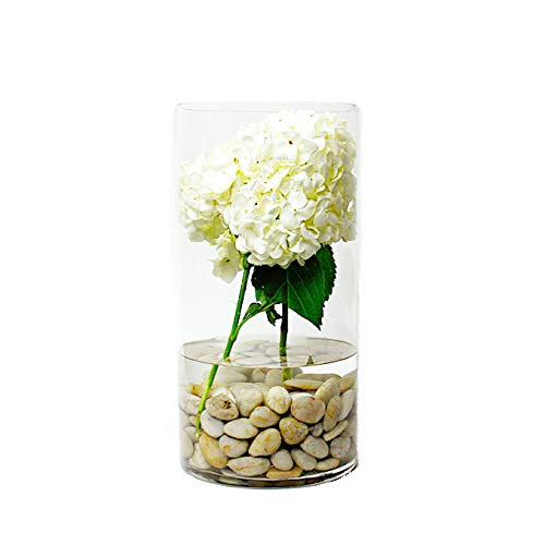 CYS EXCEL Glass Cylinder Vase, Floating Candle Holder, Flower vase, Decorative Centerpiece for Home, Business, Events or Weddings (Pack of 1) 8