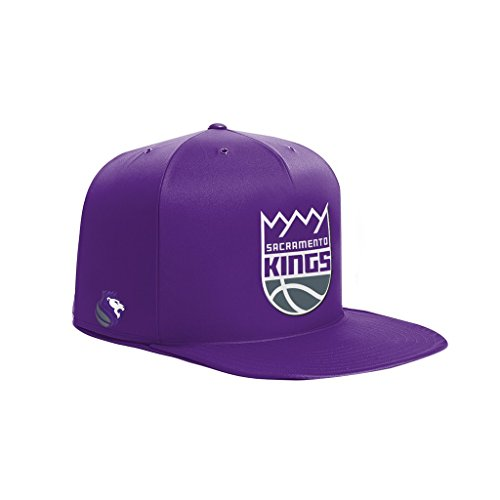 NBA Sacramento Kings NAP CAP Pet Bed, Purple, Small by NAP CAP