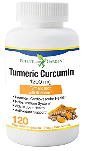 Turmeric Curcumin with Bioperine – 120 Anti-Inflammatory Capsules for Inflammation and Joint Pain Relief – Provides Antioxidant Support – 95% Curcuminoids Supplement – Best 100% All Natural Non-Gmo For Sale