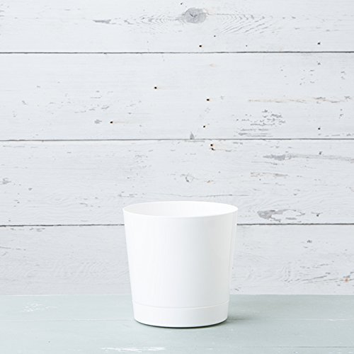 Full Depth Round Cylinder Pot, White, 10-Inch by Novelty