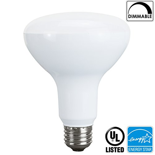 Colored Compact Fluorescent Flood Lights