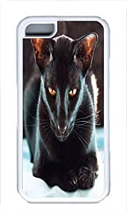 TPU Back Case Cover For iPhone 5C DIY Durable Shell Skin For iPhone 5C with Short-wool Black Cat 2