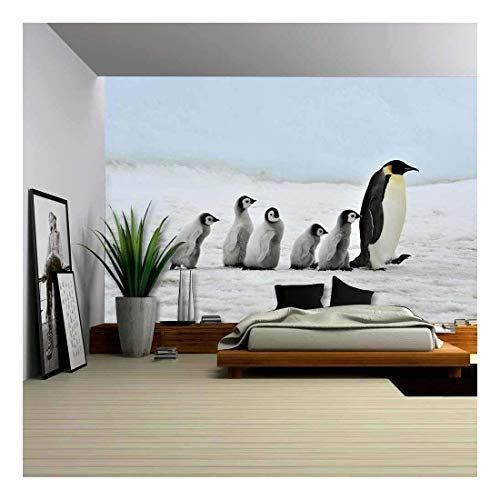 wall26 - Emperor Penguin with Chick Snow Hill, Antarctica 2010 on The Icebreaker Kapitan Khlebnikov - Removable Wall Mural | Self-Adhesive Large Wallpaper - 100x144 inches ()