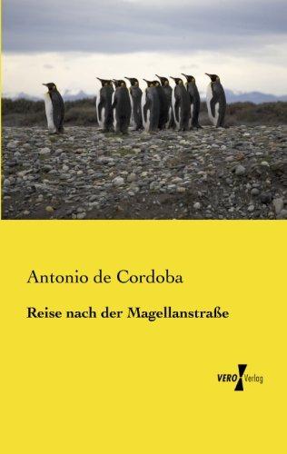 Reise nach der Magellanstrasse (German Edition)