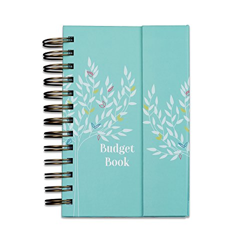 Budget Book. Monthly bill organizer. Bill tracker. Budget journal. Accounts book to keep track of finances. Pretty budget organizer. Track home expenses with pockets to store receipts (Teal)