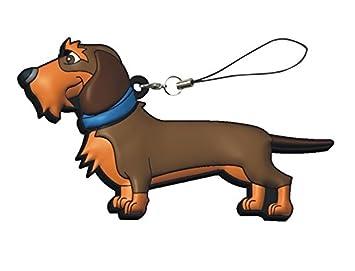 USB Pendrive Perro Teckel de 16 GB en Lata con Abre fácil: Amazon.es: Electrónica