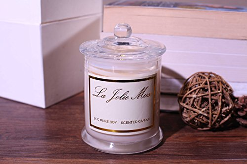 Plumeria scented candles 100 soy wax glass jar 55 hours burn fine home fragrance gifts what - Burning scented candles home dangerous really ...
