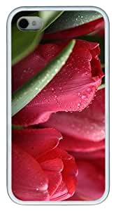 case waterproof Roses Water Drops TPU White Case for iphone 4/4S