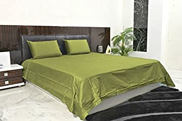 Exclusive Collection 4PC Sheet Set 2400 Thread Count Expanded Queen 100%  Egyptian Quality Sage Solid