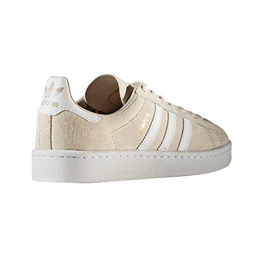 adidas Original Campus Nobuk Beige und Navy Schuhe Herren. Sneaker Trainer Clear Brown/Crystal White