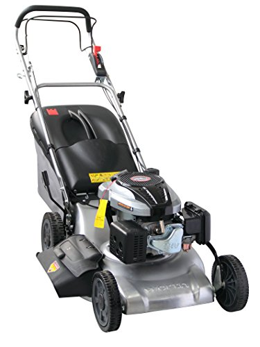 Worth Garden #1955 20'' Self Propelled Steel Deck 196 CC 3 -in-1 Gas Powered Lawn Mower by Worth