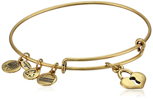 Alex and Ani Womens Key To My Heart Charm Bangle Rafaelian Gold Finish One Size